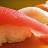 $10 for Japanese Fare at Samurai Japanese Steakhouse and Sushi Bar