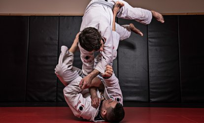 image for One Month of Brazilian Jiujitsu and Kickboxing Classes for One or Two at UNA Brazilian Jiu Jitsu (79% Off)