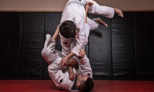 The Jiujitsu League: 10 or 20 Brazilian Jiu-Jitsu Classes or 5 One-on-One Classes at The Jiujitsu League (Up to 85% Off)