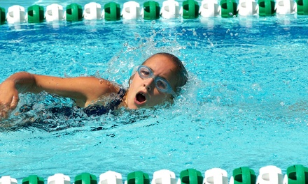 $40 for Four Intermediate Indoor Swimming Lessons at FINS (Fun in Swimming) ($76 Value)