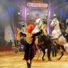 "Big Apple Circus – Up to 74% Off ""Luminocity"" Opening Night"