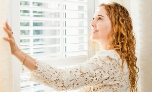 Blinds Installers Of Nc: $50 for $100 Torward Shades at Blinds Installers of NC