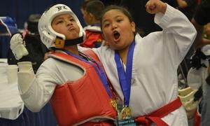 Sumner Taekwondo: $55 for $220 Worth of Martial-Arts Lessons — Sumner Taekwondo