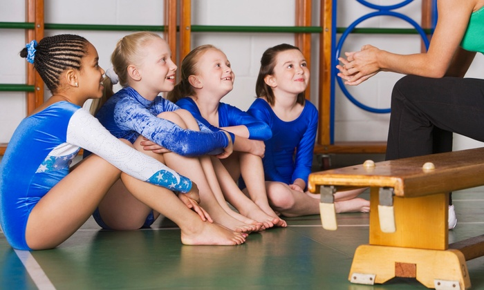 Academy of Sport and Fitness - Richmond Hill: Gymnastics Summer Camp or Drop In and Play Sessions at Academy of Sport and Fitness (56% Off)