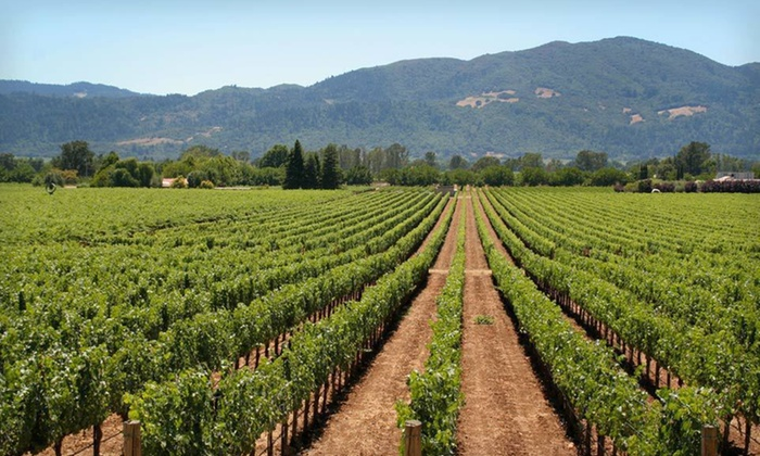 null - San Jose: Stay with Wine Tasting at Best Western Plus Sonoma Valley Inn in Sonoma Valley, CA