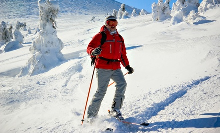 $79 for Skiing or Boarding Lesson for Up to Four, Plus a Thermos (Up to $171.50 Value)