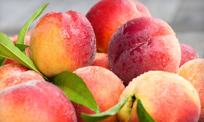 Jones Orchard - Multiple Locations: Two Bags or One Half-Bushel Basket of Pick-Your-Own Peaches at Jones Orchard (Half Off)