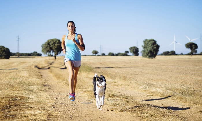 Alpha Pack Fitness - Multiple Locations: One or Two Months of Fitness Boot-Camp Classes for Dogs and People from Alpha Pack Fitness (Up to 83% Off)