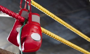 Detroit Brawl: Detroit Brawl Professional Boxing Event on Saturday, May 14, at 6:30 p.m.