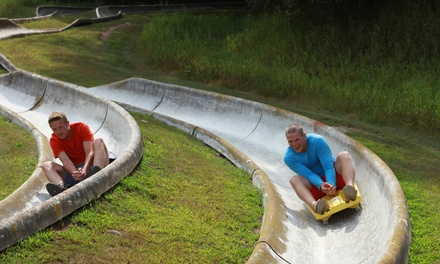 Alpine Slide, Go-Kart, and Free-Fall Ride-Packs for Two or Four People at Wild Mountain (Up to 46% Off)