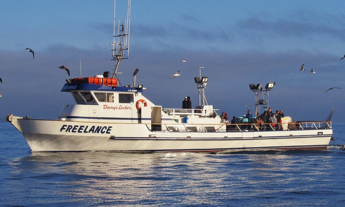 Freelance Ocean Tours - Newport Beach: Deep-Sea-Fishing Trip with Optional Meal for Kids or Adults from Freelance Sportfishing (Up to 52% Off)