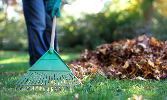 Customer Reviews - Spring Yard Cleanup - Alpenglow Landscaping LLC Groupon