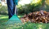 Up to 62% Off Spring Yard Cleanup