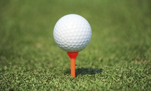 Landrum Golf Management: Up to 51% Off Introduction to Golf at World Of Golf