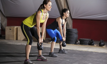 $49 for Small-Group Personal Training at No Pink Dumbbells - Small Group Fitness Training ($168 Value)