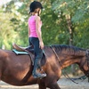 44% Off Horseback-Riding Lessons