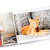 Up to 82% Off Custom  Photo Books from Collage.com
