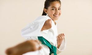 North Park Tae Kwon Do: 5 or 10 Tae Kwon Do Training Sessions at North Park Tae Kwon Do (Up to 71% Off)