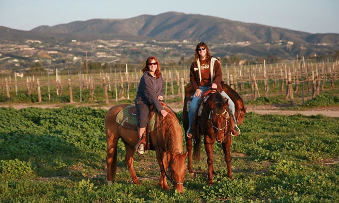 Wine Country Trails by Horseback - Temecula Wine Country : 90-Minute Horseback Tour and Wine Tasting for Two from Wine Country Trails by Horseback (Up to 50% Off)