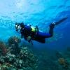 Kursy nurkowania PADI