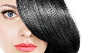Attitudes Hair Design: Partial Highlights or Haircut with Shampoo at Attitude Hair Design Salon (Up to 40% Off)