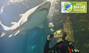 Manly SEA LIFE Sanctuary: $199 for Shark Dive Xtreme Entry at Manly SEA LIFE Sanctuary (Up to $299 Value)