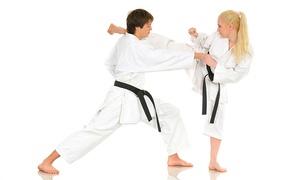 Pacific International Taekwondo: Taekwondo - 10 ($29), 20 ($69) or 30 Classes ($99) at Pacific International Taekwondo, 15 Locations (Up to $360 Value)