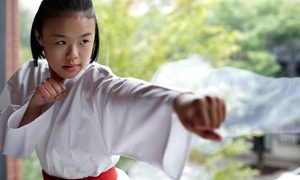 EMIRATES KARATE CENTRE L.L.C: Five, Ten or 15 Sessions of Yoga or Karate at Emirates Karate Centre (Up to 52% Off)
