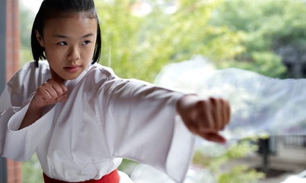 Six Martial Arts Lessons or a Kid's Birthday Party at You Brother's Champions Tae Kwon Do (Up to 75% Off)