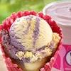Baskin-Robbins — Ice Cream