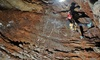 Horne Lake - Qualicum Beach: 4-Hour High Adventure Cave Tour for One or Two at Horne Lake Caves Park in Qualicum Beach (Up to 48% Off)