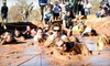 Arizona Mudathon - Desert View: Entry for One or Two to a 5-Mile Race from Arizona Mudathon on Saturday, April 27 (Up to 58% Off)