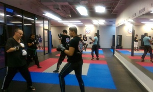Modern Martial Arts: Four Weeks of Unlimited Boxing or Kickboxing Classes at Modern Martial Arts  (43% Off)