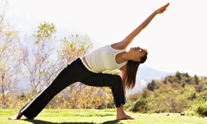 Yoga Center for Healthy Living, LLC: Six or Eight Yoga Classes at Yoga Center for Healthy Living, LLC (Up to 55% Off)