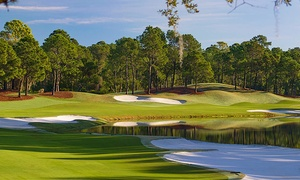 Tranquilo Golf Club: 18 Holes of Golf and Course Replay for 1, 2, or 4 at Tranquilo Golf Club at Four Seasons Resort (Up to 59% Off)