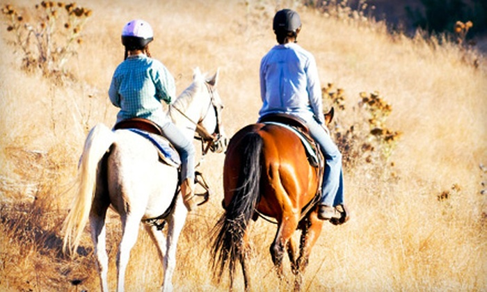 Talking Horse Riding Stables - Corona: 75-Minute Guided Trail Ride for Two or Four at Talking Horse Riding Stables (55% Off)