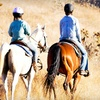 55% Off Guided Horseback Trail Ride