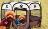 Petit parc pour petit chien