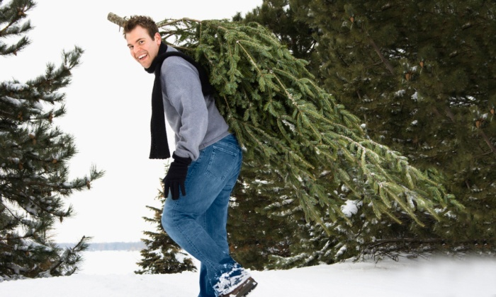 Tannenbaum Selber Schlagen.Tacke Weihnachtsbaumhof