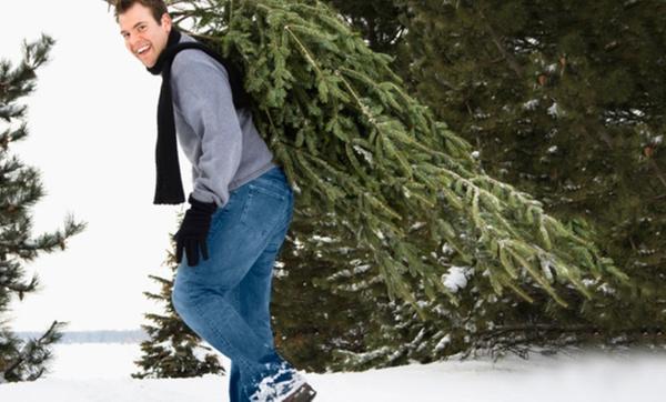 Weihnachtsbaum Selber Schlagen Sauerland.Tacke Weihnachtsbaumhof