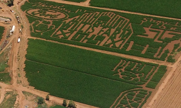 The Willis Farm - Walnut Meadows: Corn-Maze Admission for Two or Four at The Willis Farm (50% Off)