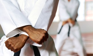 A-Long's Kung Fu Academy: 10 or 20 Cardio Kung Fu Classes or One Month of Unlimited Fitness Classes at A-Long's Kung Fu Academy (Up to 76% Off)