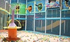 Seascape Kids Fun - Anaheim: Two, Four, or Eight Visits for All Ages at Seascape Kids Fun (Up to 44% Off)