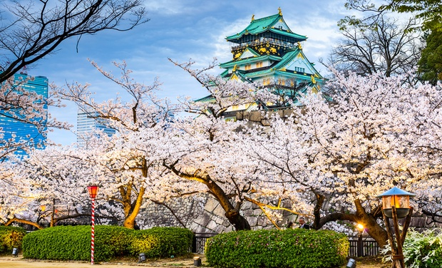 TripAlertz wants you to check out ✈ 9-Day Tour of Japan with Airfare from Affordable Asia Tours. Price per Person Based on Double Occupancy. ✈ 9-Day Tour of Tokyo & Kyoto with Airfare - Tour of Tokyo & Kyoto