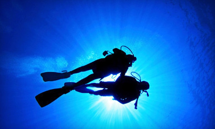 Aqua Trek Sports - Arlington: Diver-Certification Course or Discover Scuba Class for One or Two at Aqua Trek Sports in Arlington (Up to 62% Off)