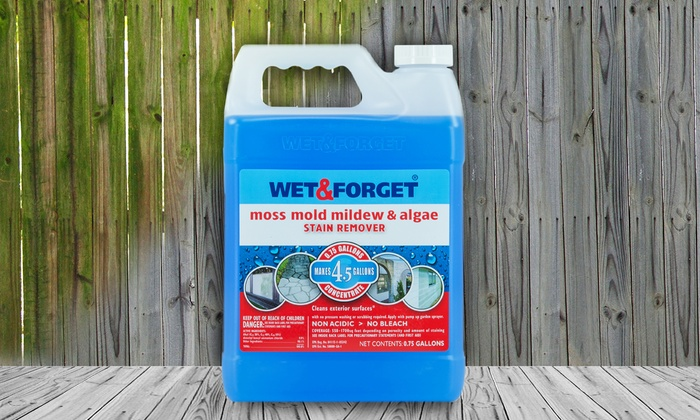 Wet & Forget Outdoor Stain Remover
