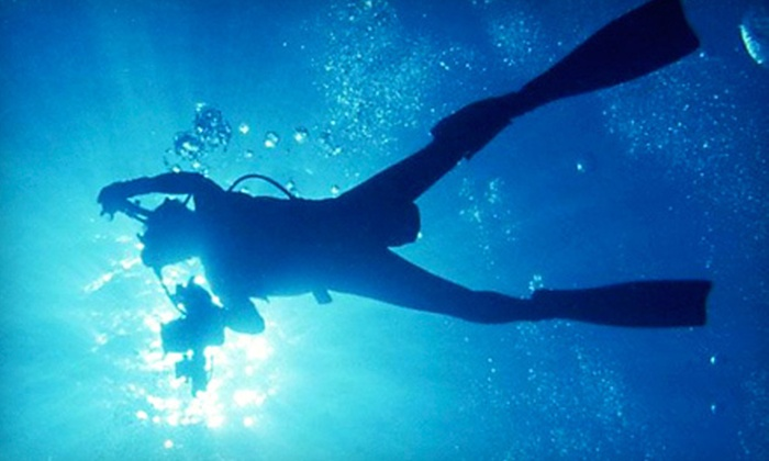 RC Scuba Center - RC Scuba Center: Four- or Six-Day PADI Open Water Course with Catalina Weekend from RC Scuba Center (67% Off). Three Options Available.