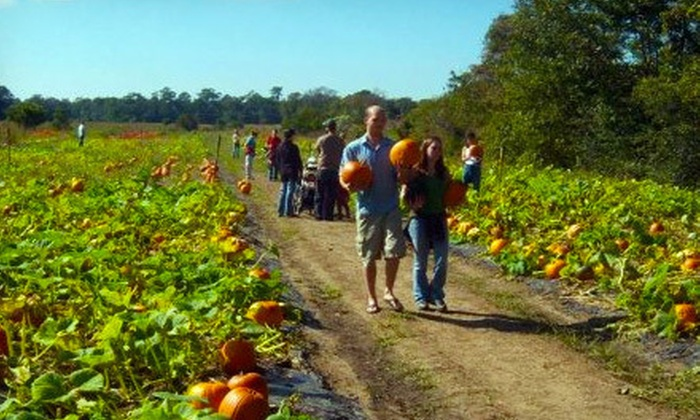 Legare Farms - Johns Island: Myrtle-Maze and Pumpkin-Patch Visit for Two or Four at Legare Farms (Up to 57% Off)