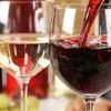 49% Off Spanish Wine at Sheffield Wine & Liquors Shoppe