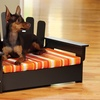 Pet Adirondack Chair with Pet Cushion